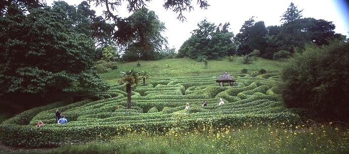 Glendurgan-Maze2-cTLamb