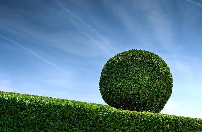bush-garden-gardener-9204