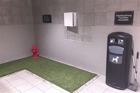 doggy%20bathroom